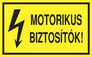 Motorikus biztosítók